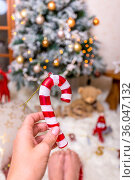 Christmas season a time to decorate the tree and celebrate with loved... Стоковое фото, фотограф Zoonar.com/Leah-Anne Thompson / easy Fotostock / Фотобанк Лори