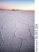 Uyuni salar, the world's largest saltflat, South Lipez, Bolivia. Стоковое фото, фотограф Maxime Aliaga / Nature Picture Library / Фотобанк Лори