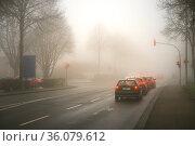 PKW halten im Nebel vor einer roten Ampel an einer Kreuzung. Стоковое фото, фотограф Zoonar.com/Frank Roeder / easy Fotostock / Фотобанк Лори