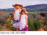 Two little girls in white dresses and hats with baskets stand among... Стоковое фото, фотограф Zoonar.com/OKSANA SHUFRYCH / easy Fotostock / Фотобанк Лори