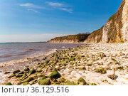 North sea coast with stones and cliffs of Danes Dyke near Bridlington... Стоковое фото, фотограф Zoonar.com/Bernd Brueggemann / easy Fotostock / Фотобанк Лори