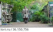 Back view of african american male gardener walking with wheelbarrow at garden center. Стоковое видео, агентство Wavebreak Media / Фотобанк Лори