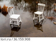 Two chairs in a pond in a park. Стоковое фото, фотограф Douglas Williams / age Fotostock / Фотобанк Лори