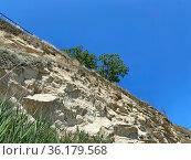 Отвесная скала, Керчь, Крым. Стоковое фото, фотограф Мария Кылосова / Фотобанк Лори