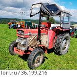 Traktor, Massey Ferguson Typ MF 135, 1976, Oldtimer. Стоковое фото, фотограф Zoonar.com/Manfred Ruckszio / easy Fotostock / Фотобанк Лори