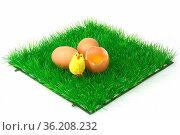 Braune Eier auf einer dekorativen Grasmatte. Стоковое фото, фотограф Zoonar.com/Birgit Reitz-Hofmann / easy Fotostock / Фотобанк Лори