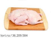 Rohe Ente auf einem Küchenbrett. Стоковое фото, фотограф Zoonar.com/Birgit Reitz-Hofmann / easy Fotostock / Фотобанк Лори
