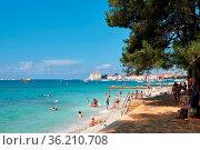 Badende Urlauber am Strand von Porec in Kroatien. Im Hintergrund ... Стоковое фото, фотограф Zoonar.com/Heiko Kueverling / age Fotostock / Фотобанк Лори