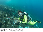 Diver with marine trash underwater, Maluku, Indonesia. November. Стоковое фото, фотограф Jurgen Freund / Nature Picture Library / Фотобанк Лори