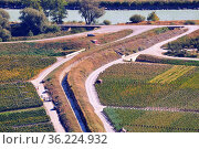 Harvest time in vineyards, view from above for vineyards and Bisse... Стоковое фото, фотограф Danuta Hyniewska / age Fotostock / Фотобанк Лори
