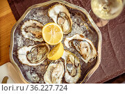 Round plate with fresh oysters on ice and half lemon in Mediterranean restaurant. Стоковое фото, фотограф katalinks / Фотобанк Лори