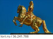 Dresden - Golden Rider. Dresden - Goldener Reiter. Стоковое фото, фотограф Zoonar.com/Bernhard Klar / age Fotostock / Фотобанк Лори