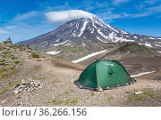 Green tourist tent Red Fox for camping and travel standing in mountain on background of volcanic landscape - cone of Koryak Volcano (2015 год). Редакционное фото, фотограф А. А. Пирагис / Фотобанк Лори