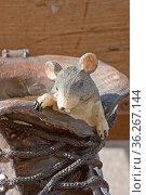 Originelles Mitbringsel - eine Maus im Schuh passend zum Urlaubsland... Стоковое фото, фотограф Zoonar.com/Christa Eder / age Fotostock / Фотобанк Лори