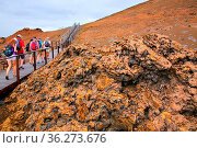 Group of tourists walking on a boardwalk on Bartolome island, Galapagos... Стоковое фото, фотограф Zoonar.com/Don Mammoser / age Fotostock / Фотобанк Лори