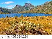 Cradle Mountain is an iconic wilderness destination - Tasmania, Australia... Стоковое фото, фотограф Zoonar.com/Laszlo Konya / easy Fotostock / Фотобанк Лори