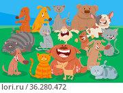 Cartoon illustration of comic dogs and cats comic animal characters... Стоковое фото, фотограф Zoonar.com/Igor Zakowski / easy Fotostock / Фотобанк Лори