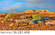 Panoramic landscape with desert and mountains at sundown inTenerife... Стоковое фото, фотограф Zoonar.com/Roman Sigaev / easy Fotostock / Фотобанк Лори