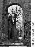 Gate and medieval street in Santarcangelo di Romagna town, Rimini... Стоковое фото, фотограф Zoonar.com/Roman Sigaev / easy Fotostock / Фотобанк Лори