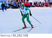 Skilangläufer Anders Gløersen, Norwegen, am 38. Engadin Skimarathon... Стоковое фото, фотограф Zoonar.com/Georg / age Fotostock / Фотобанк Лори