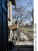 old bicycle stands near the wall, in the courtyard of a village house, rear view. Стоковое фото, фотограф Tetiana Chugunova / Фотобанк Лори