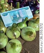 Российские деньги на фоне свежего урожая белого и красного лука. Стоковое фото, фотограф Цибаев Алексей / Фотобанк Лори