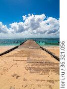 Steg ins Meer Saona Dominikanische Republik. Стоковое фото, фотограф Zoonar.com/Nils Melzer / easy Fotostock / Фотобанк Лори