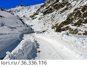 Passstrasse während der Wintersperre, Grosser Sankt Bernhard Pass... Стоковое фото, фотограф Zoonar.com/Mike / easy Fotostock / Фотобанк Лори