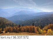 Wonderful Caucasus mountain landscape. Стоковое фото, фотограф Алексей Кузнецов / Фотобанк Лори