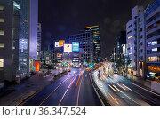 Aoyama-dori avenue at the night lightening. Tokyo. Japan (2019 год). Редакционное фото, фотограф Serg Zastavkin / Фотобанк Лори
