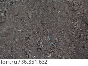 Soil dry ground texture background pattern. Dirt earth. Стоковое фото, фотограф Zoonar.com/Max / easy Fotostock / Фотобанк Лори