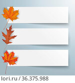3 paper banners with foliage on the white background. Eps 10 vector... Стоковое фото, фотограф Zoonar.com/Alexander Limbach / easy Fotostock / Фотобанк Лори