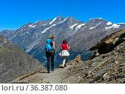 Zwei Wanderer in den Walliser Alpen, hinten Mischabel-Gruppe und ... Стоковое фото, фотограф Zoonar.com/Pant / age Fotostock / Фотобанк Лори