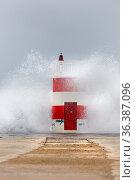 Leuchtturm, am Hafen von Nazare bei Sturm, Nazare, Portugal, Europa... Стоковое фото, фотограф Zoonar.com/Stefan Ernst / age Fotostock / Фотобанк Лори
