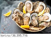 Fresh oyster serve with lemon in basket on black stone plate. Fresh... Стоковое фото, фотограф Zoonar.com/Vichie81 / easy Fotostock / Фотобанк Лори