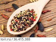 Closeup of colorful peppercorns on a wooden wooden spoon on rustic... Стоковое фото, фотограф Zoonar.com/Thomas Klee / easy Fotostock / Фотобанк Лори
