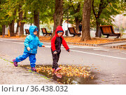 The cute little boy and girl are walking through the puddle with yellow... Стоковое фото, фотограф Zoonar.com/Oksana Shufrych / easy Fotostock / Фотобанк Лори