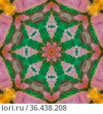 Star shapes created from feathers in pattern. Geometric kaleidoscope... Стоковое фото, фотограф Zoonar.com/Jason C. Finn / easy Fotostock / Фотобанк Лори