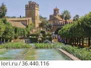 Pool in the Lower Garden, Alcazar de los Reyes Cristianos, Cordoba... Стоковое фото, фотограф Ken Welsh / age Fotostock / Фотобанк Лори