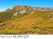 Wombat Peak in the Cradle Mountain-Lake St Clair National Park - Tasmania... Стоковое фото, фотограф Zoonar.com/Laszlo Konya / easy Fotostock / Фотобанк Лори