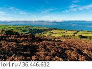 Landscape in the Exmoor National Park on Porlock Hill, Somerset, England... Стоковое фото, фотограф Zoonar.com/Bernd Brueggemann / easy Fotostock / Фотобанк Лори
