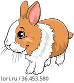 Cartoon illustration of cute dwarf rabbit comic animal character. Стоковое фото, фотограф Zoonar.com/Igor Zakowski / easy Fotostock / Фотобанк Лори