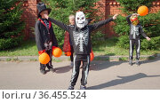 Halloween prepare to collect candy boy in skeleton costume dances on street. Trick-or-treating. Guising. Jack-o-lantern. Children in carnival costumes outdoors. Witch and skeletons. orange balloons. Стоковое видео, видеограф Ирина Ткачук / Фотобанк Лори