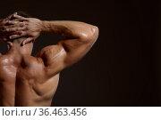 Male athlete with muscular body, back view. Стоковое фото, фотограф Tryapitsyn Sergiy / Фотобанк Лори