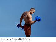 Male muscular athlete holds dumbbells in studio. Стоковое фото, фотограф Tryapitsyn Sergiy / Фотобанк Лори