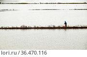 Man catch fish on flooded field when flooding season, farm filled... Стоковое фото, фотограф Zoonar.com/Hong Hanh Mac Thi / easy Fotostock / Фотобанк Лори