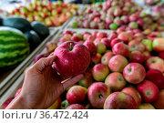 Man's hand holding a shiny and crisp red apple. Shop interior ambient... Стоковое фото, фотограф Zoonar.com/VALMEDIA / easy Fotostock / Фотобанк Лори