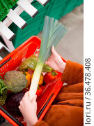 Basket with vegetables and herbs and a female hand. Стоковое фото, фотограф Zoonar.com/Max / easy Fotostock / Фотобанк Лори