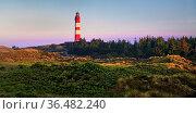 Heidelandschaft mit dem Leuchtturm im Morgenlicht, Insel Amrum, Nordfriesland... Стоковое фото, фотограф Zoonar.com/Stefan Ziese / age Fotostock / Фотобанк Лори
