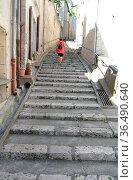 Blois, Loire, frau, person, mensch, treppe, frankreich, gasse, altstadtgasse... Стоковое фото, фотограф Zoonar.com/Volker Rauch / easy Fotostock / Фотобанк Лори